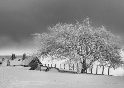Noiretblanc-Paysage-0167_Neige_et_glace-11-2