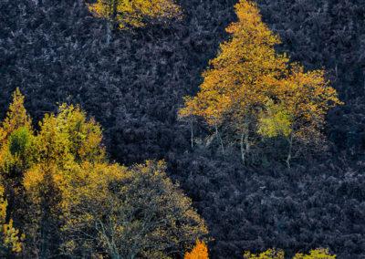 couleur-Paysage-0124_01_La_montagne_04-2